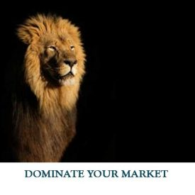 DOMINATE-YOUR-MARKET