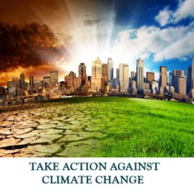 TAKE-ACTION-AGAINST-CLIMATE-CHANGE