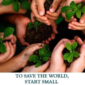 TO-SAVE-THE-WORLD,-START-SMALL