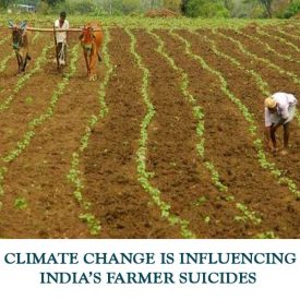 CLIMATE-CHANGE-IS-INFLUENCING-INDIAS-FARMER-SUICIDES