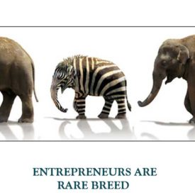 ENTREPRENEURS-ARE-RARE-BREED